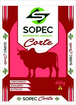 BOVINOS CORTE 40KG_003